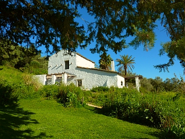 dancingtreefarm-venetian-cottage-1