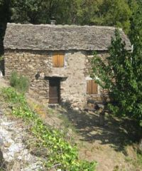 Holiday Rental in Auziale #1